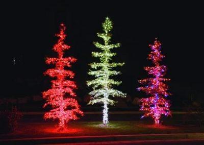 3 Tree Lighting Project